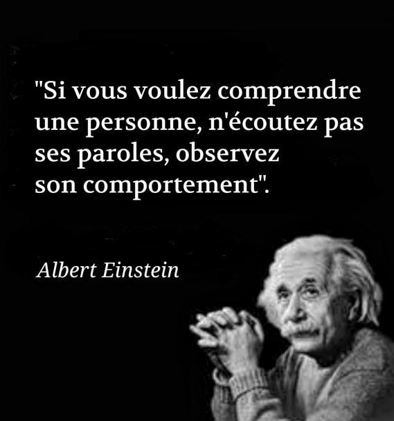 Einstein comportement