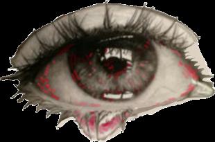 Mix ull hostal santa clara estartit